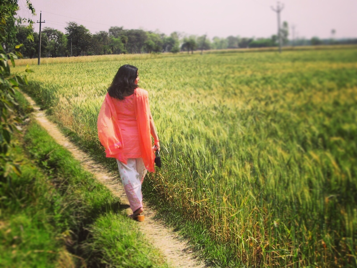 India-Jagdishpur-A Walk Through the Paddy Fields!!!